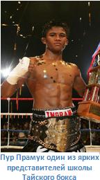 чемпион по тайскому боксу